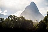 NEW ZEALAND, Fiordland National Park, Mitre Peak rises above the Trees, Ben M Thomas