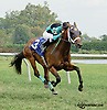 D'tumbling Dice winning at Delaware Park on 9/11/14