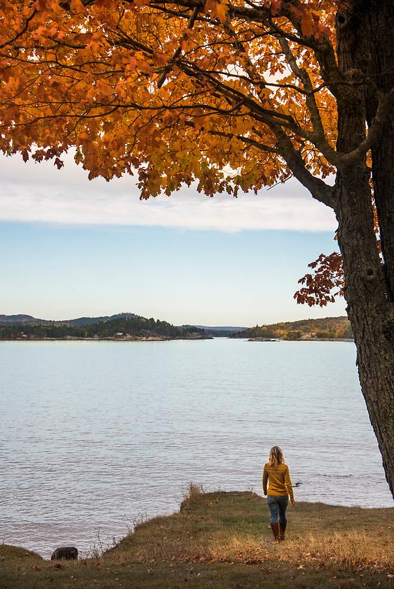 A walk beneath a fall color canopy along Lake Superior at Presque Isle Park in Marquette, Michigan.