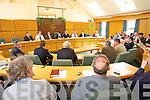 in the Kerry County Council Chambers on Friday.