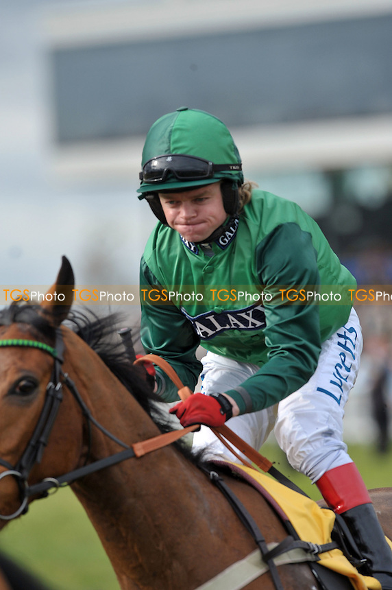 Robert Thornton first ride since breaking his arm on Raya Star  in the Betfair Hurdle (Handicap) Grade 3 Cl1 2m110y - Horse Racing at Newbury Racecourse, Berkshire - 17/02/2012 - MANDATORY CREDIT: Martin Dalton/TGSPHOTO - Self billing applies where appropriate - 0845 094 6026 - contact@tgsphoto.co.uk - NO UNPAID USE.