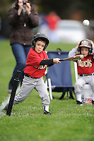 T-BALL DIAMONDBACKS