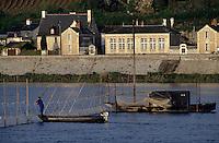 Europe/France/Pays de la Loire/49/Maine-et-Loire/Le Thoureil: Pêche au saumon sur la Loire