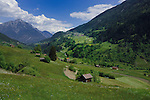Cow shelter, properties and farm land  in the picturesqe district of Imst, Tyrol,Tirol, Austria.