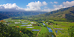 Kauai, HI<br /> View of Hanalei Valley taro fields and central mountains in morning sun, Hanalei National Wildlife Refuge