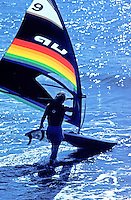 Windsurfer carrying her board out to the water