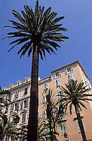 France/Corse/Corse-du-Sud/2A/Ajaccio: Place des Palmiers
