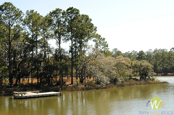 Spring Island, SC. Callawassee creek and dock.