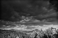Image Ref: H003<br />