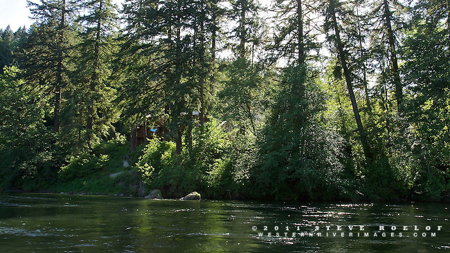 A small cabin is hidden in the forest along the river with afternoon light in the trees.