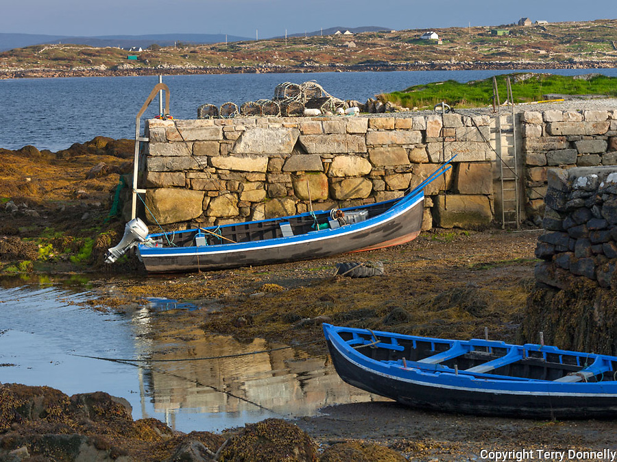 County Galway, Ireland: Row boats sit on the mud flats at low tide, Roundstone harbor