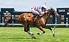 Wilburn's Princess winning The International Ladies FEGENTRI  race at Delaware Park on 6/13/16