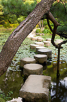 Myriad paths with scarcely a traveler<br />