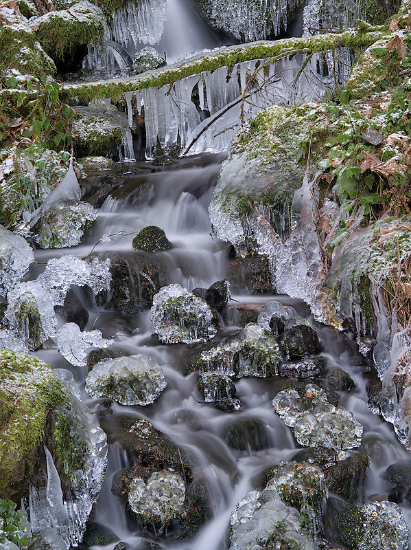 Small seasonal feeder stream with ice. Columbia River Gorge National Scenic Area, Oregon