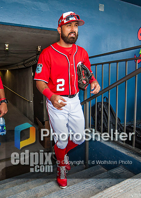 28 February 2017: Washington Nationals outfielder Adam Eaton steps up from the tunnel and into the dugout prior to the inaugural Spring Training game between the Washington Nationals and the Houston Astros at the Ballpark of the Palm Beaches in West Palm Beach, Florida. The Nationals defeated the Astros 4-3 in Grapefruit League play. Mandatory Credit: Ed Wolfstein Photo *** RAW (NEF) Image File Available ***