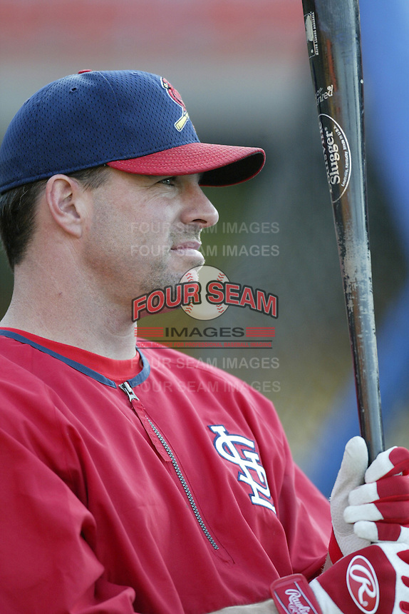 Jim Edmonds of the St. Louis Cardinals before a 2002 MLB season game against the Los Angeles Dodgers at Dodger Stadium, in Los Angeles, California. (Larry Goren/Four Seam Images)