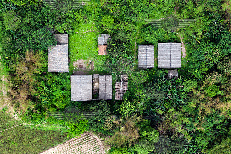Tiled buildings surrounded by verdant green foliage in the Shibuzhen area. /Felix Features
