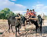 MADAGASCAR, family sitting in an ox cart in road, Besely Village