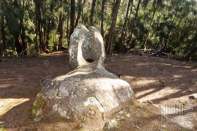 "Kaule o Nanahoa (""the penis of Nanahoa"") or Phallic Rock in Pala'au State Park, Moloka'i"