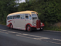 AEC Regal Single Decker Buses - 1950
