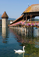 Switzerland, Canton Lucerne: Chapel Bridge and Water Tower