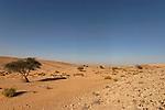 Wadi Yamin