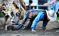 Shane Stiffler tries to crawl to safety as a large bull takes aim at his backside for some revenge during the bull riding event at the Fauquier County Fair.