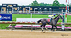 Jackson P winning at Delaware Park on 6/16/16