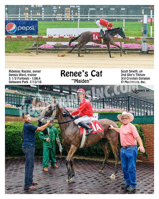 Renee's Cat winning at Delaware Park on 7/13/16