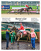 Renee's Cat winning at Delaware Park on 7/13/16