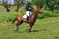 Tammy Marcinko, Sassafras