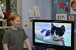 Wantagh, New York, USA. 7th February 2016. MIKE DAY, 13, of Wantagh, watches a cute black and white kitten player in Hallmark Channel Kitten Bowl III, at Last Hope Animal Rescue's Open House, where the adoption center's volunteers, including Mike, and visitors cheer on their team, the Last Hope Lions. Over 100 adoptable kittens from Last Hope Inc and North Shore Animal League of America participated in the taped games, and the Home and Family Felines won the 2016 championship, which first aired the day of Super Bowl 50.