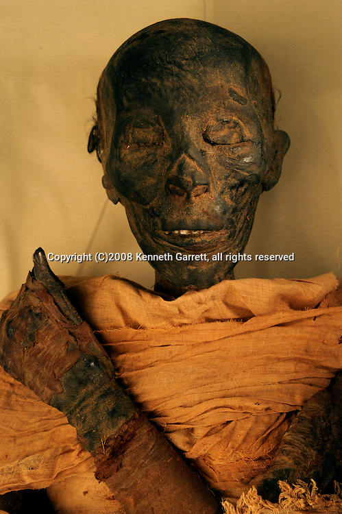Hatshepsut; Egypt; Egyptian Museum; Thutmosis II mummy; New Kingdom; 18th dynasty
