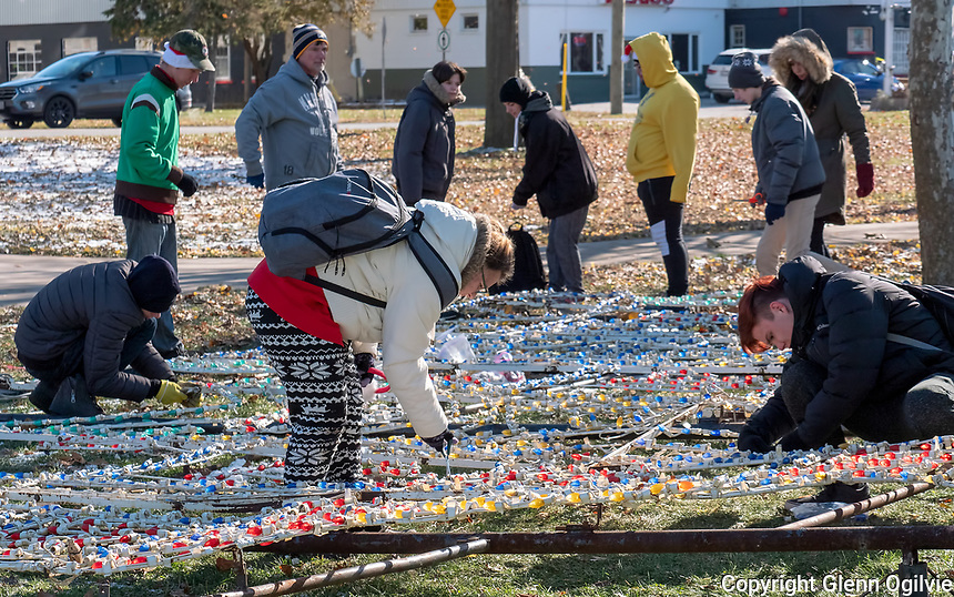A group of 42 Alexander MacKenzie Secondary School students took part in the annual Celebration of Lights setup at Centennial Park. Organizer and shop supervisor Steve Wilcox said it's a full day for students setting up light displays and making repairs.