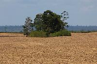 Área desmatada para plantação de milho fronteira PA/MA.<br /> Ulionópolis, Pará, BrasilFoto Paulo Santos08/05/2012
