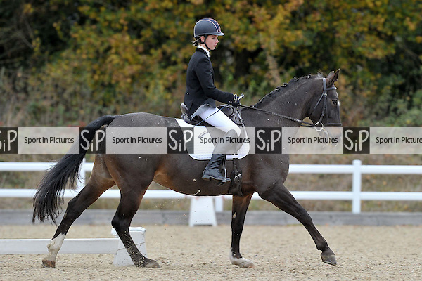 Class 6. Novice 34. Unaffiliated Dressage. Brook Farm Training Centre. Essex. 06/11/2016. MANDATORY Credit Garry Bowden/Sportinpictures - NO UNAUTHORISED USE - 07837 394578