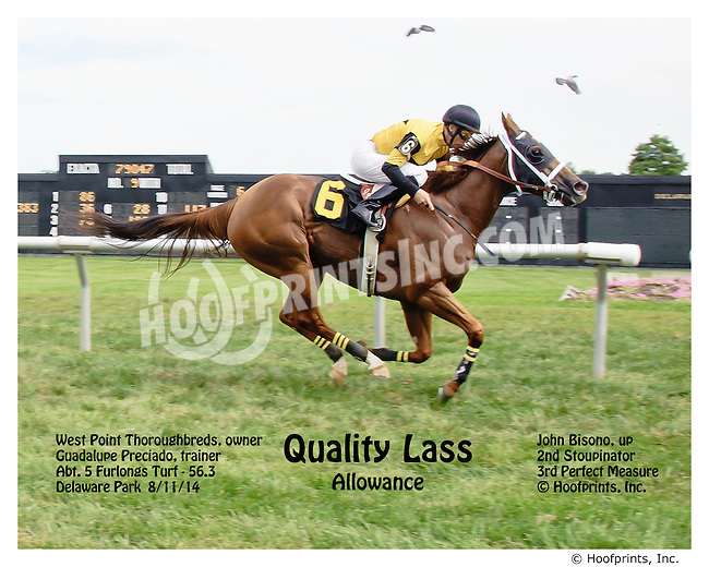 Quality Lass winning at Delaware Park on 8/11/14 with herons flying in the background