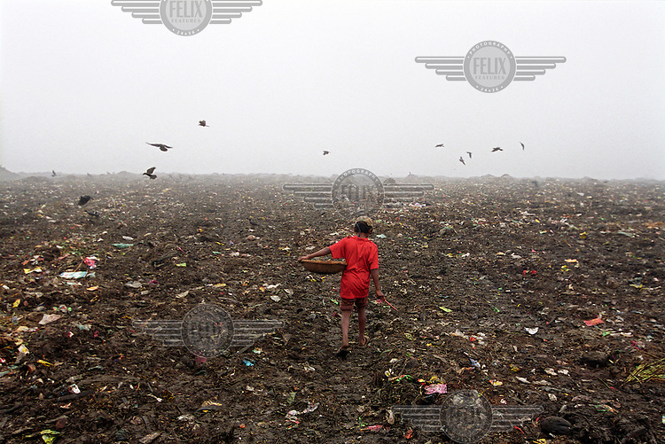 The Kajla rubbish dump is one of three landfill sites in this city of twelve million people.  Around 5,000 tonnes of garbage are dumped here each day and over a thousand people, including children, work among the rubbish, sorting through the waste and collecting items to sell to retailers for recycling.