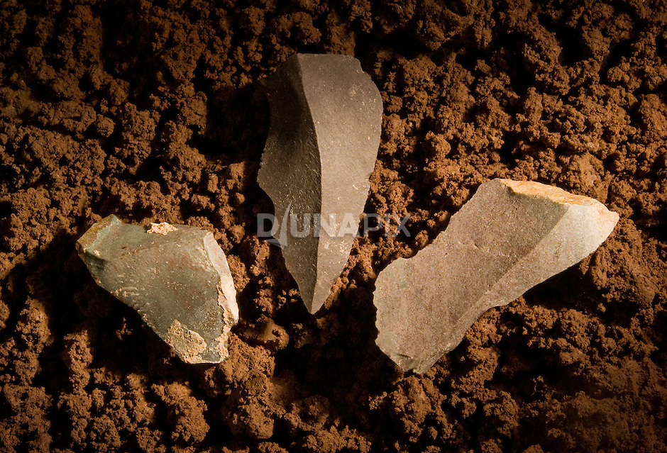 Thousands of stone tools have been recovered from the hobbit layers of Liang Bua Cave, leading to controversy about if and how Homo floresiensis used its tiny brain to craft technology.