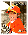 2011 Burlington American Goldfish