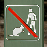Panneau interdit de nourrir les kangourous. Ile de Kangourou (Australie du Sud)