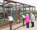 The Owl and Monkey Haven on the Isle of Wight