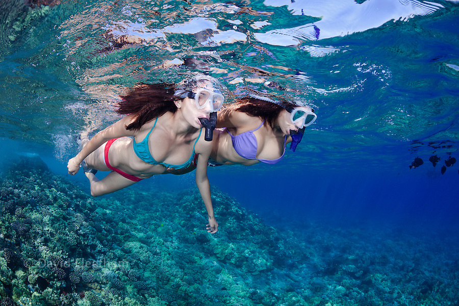 Two young girls (MR) free diving off Molokini Marine Reserve, Maui, Hawaii.
