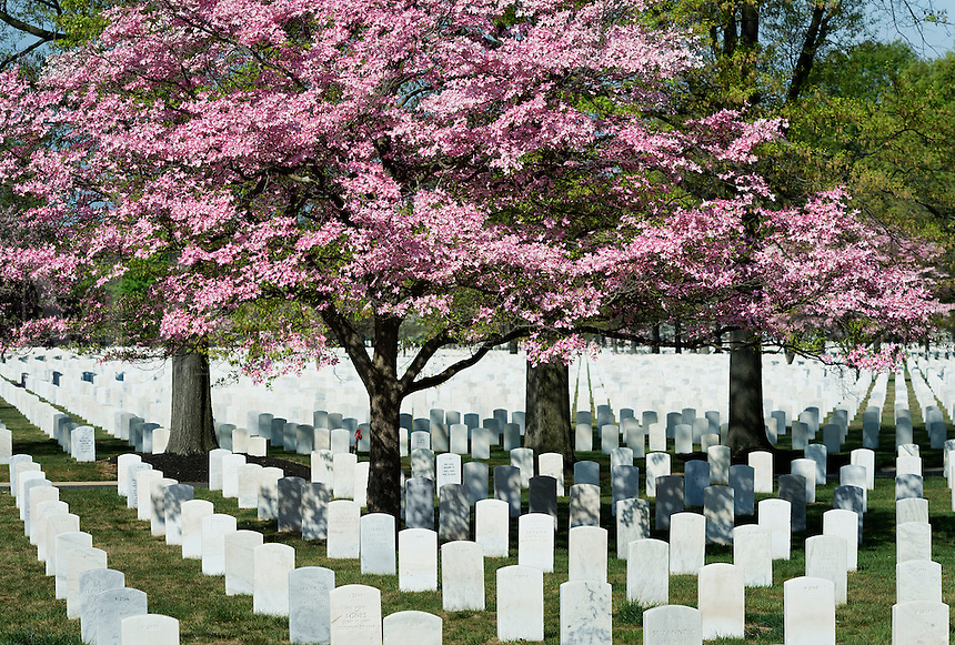 Beverly National Cemetery, Beverly, New Jersey, USA