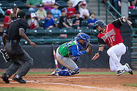 Andy Ibanez (7) of the Hickory Crawdads tries to avoid being tagged out by Lexington Legends catcher Xavier Fernandez (34) as home plate umpire Darrell Roberts watches the play at L.P. Frans Stadium on April 29, 2016 in Hickory, North Carolina.  The Crawdads defeated the Legends 6-2.  (Brian Westerholt/Four Seam Images)