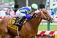BALTIMORE, MD - MAY 19:  Vertical Oak , #6 with Joe Ortiz wins the Miss Preakness Stakes on Black-Eyed Susan Day at Pimlico Race Course on May 19, 2017 in Baltimore, Maryland.(Photo by Sue Kawczynski/Eclipse Sportswire/Getty Images)