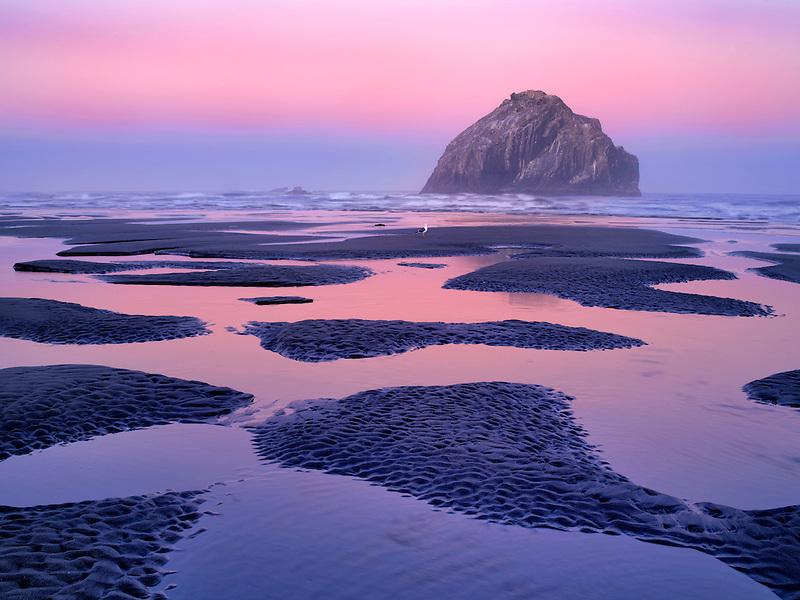 Low tide pools and seastacks reflecting sunrise. Bandon Beach. Oregon