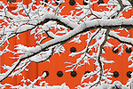 Kōyasan Shingon Temple, Mount Kōya, Wakayama Prefecture, Japan<br />