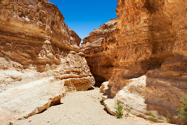 The desert canyon near the Sahara oasis of Mides, Tunisia, North Africa