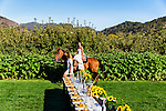 Bride riding horseback to meet groom. Wedding grounds at Avila Valley Barn